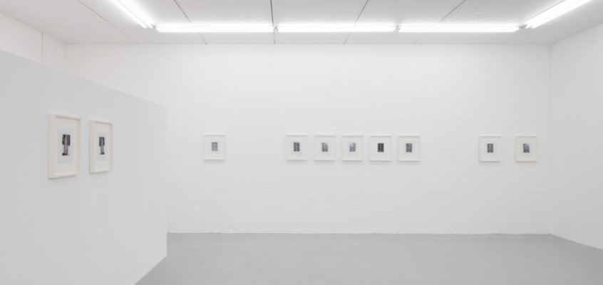 FLOW – ON SHOW: Megan Plunkett | I BET YOU WISH YOU DID AND I KNOW I DO